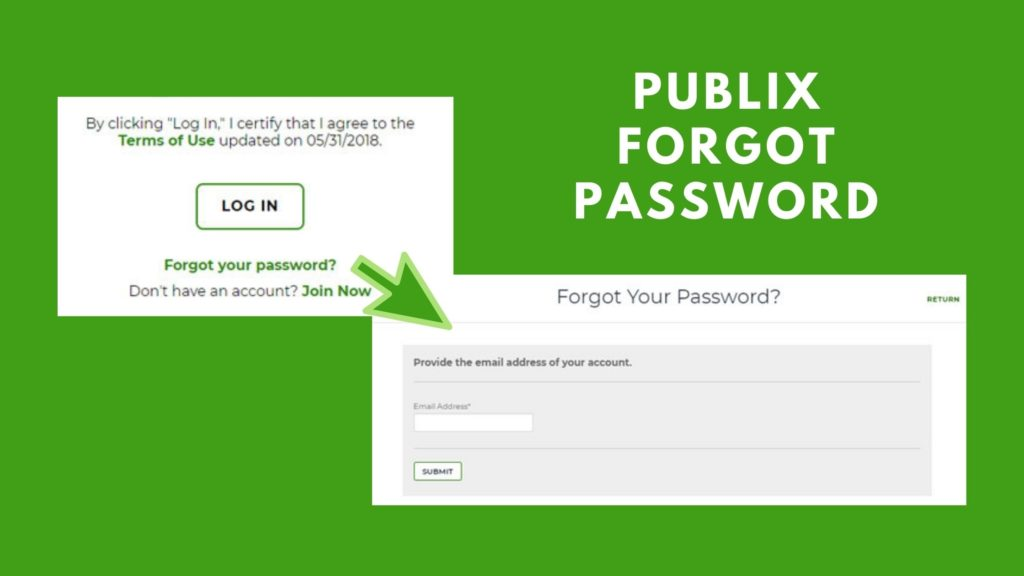 publix forgot password